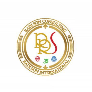 radison consulting